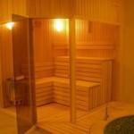 ön tarafı tamamen cam sauna