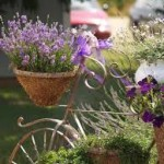 bahçe dekorasyonu örnekleri
